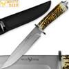 WHITE DEER Apprentice 12.5in Knife 440 Stainless Steel