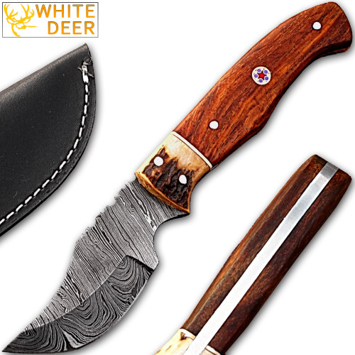 White Deer Damascus Steel Skinner Knife w/ Walnut Wood and  stag Bolster 1095 HC