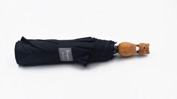 Umbrella  Black Cat