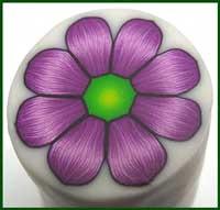 Yonat's Purple Flower Cane in Hebrew