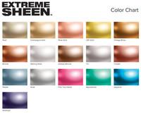 Extreme Sheen Paint 2 oz Aquamarine