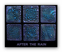 Helen Breil Stamps - After the Rain