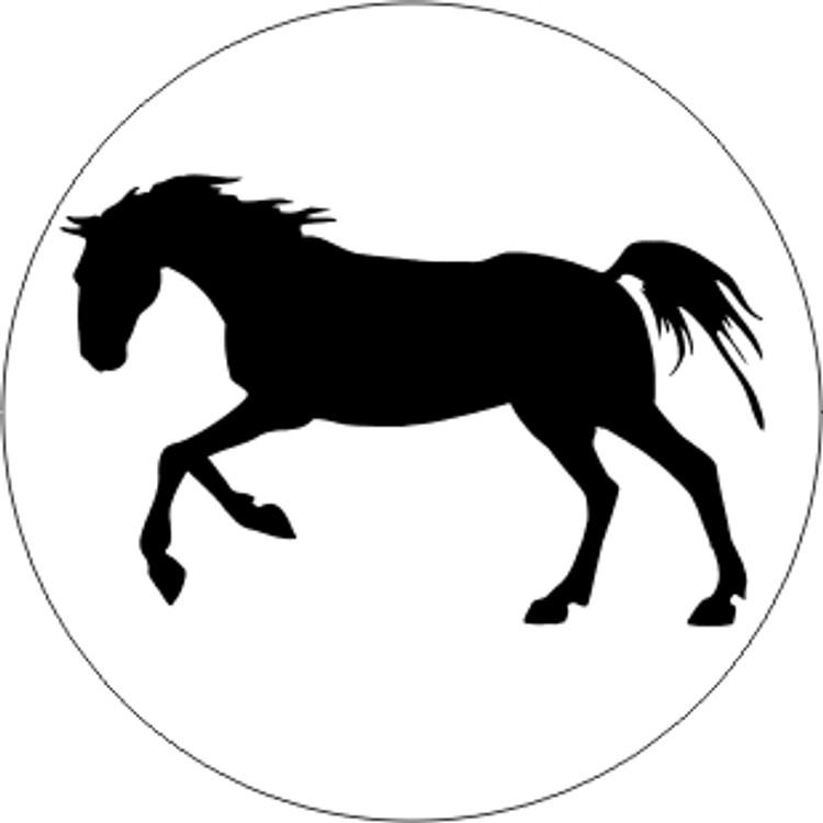 ANIMALS - HORSES - HORSE 12