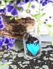 Australian butterfly for sale papilio ulysses