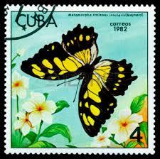 Image result for VICTORINA STELENES stamp
