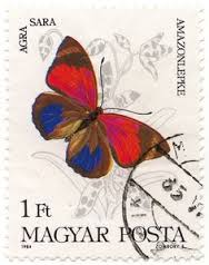 Image result for agrias butterfly stamp