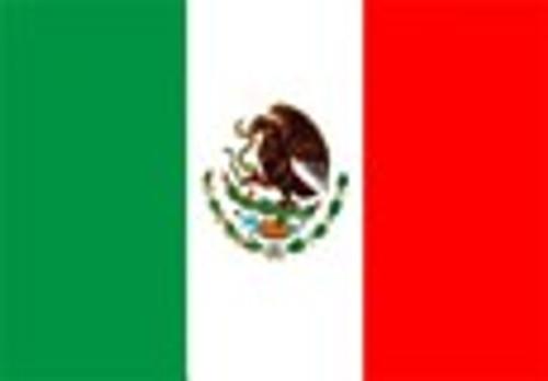 Mexican SHG Huatusco El Santo EP(GP) Green Gourmet Coffee Beans