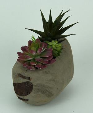 https://s3.amazonaws.com/zeckosimages/CON-22144-small-egg-shape-wooden-pot-succulents-1I.jpg
