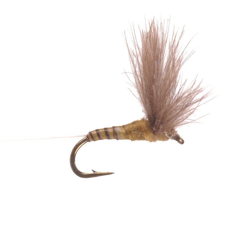 CDC Biot Blue Wing Olive Comparadun