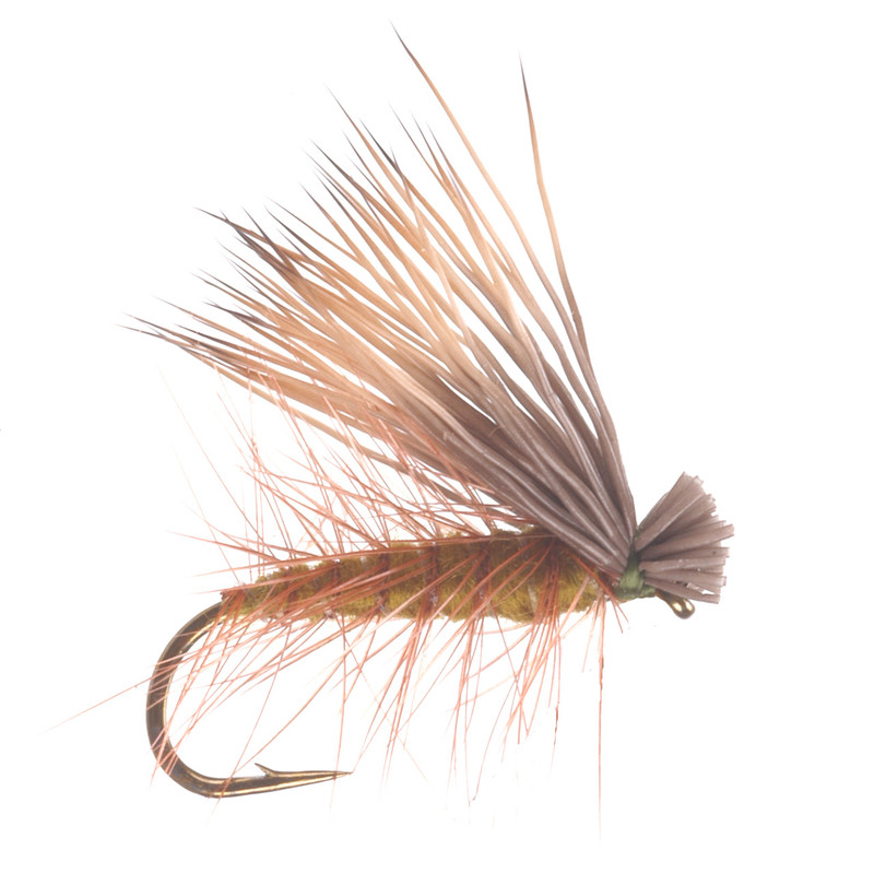 Elk Hair Caddis Olive Dry Fly
