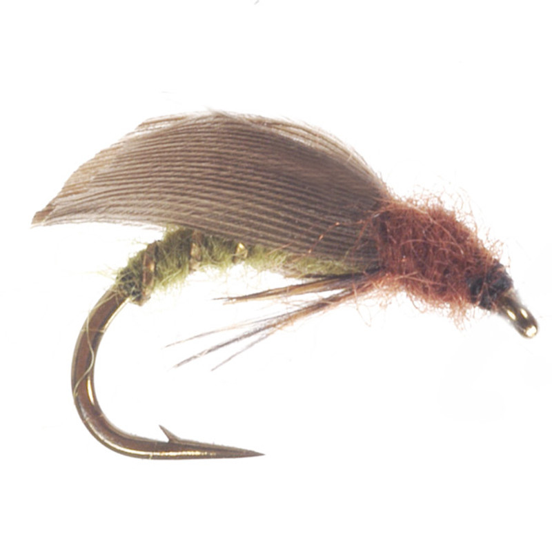 Caddis Pupa Green Side View