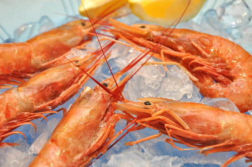 Cooked Live Prawns Frozen (per box)