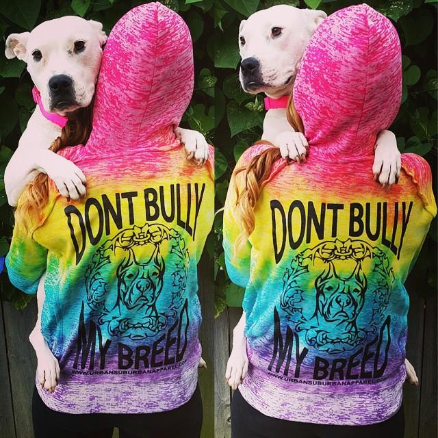 DON'T BULLY MY BREED Rainbow Ladies Hoody (Back Print)