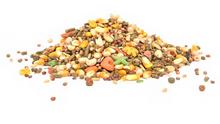 Enriched Hamster / Gerbil Food