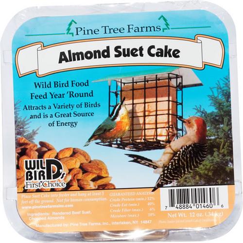 Almond Suet Cake