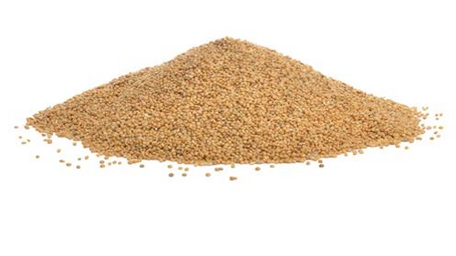 German Millet