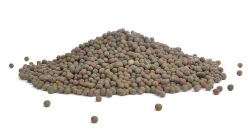 Austrian Peas