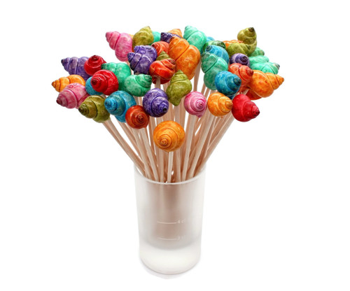 Multi Dyed Seashell Cocktail Picks, Shell Toothpicks Free Shipping Great Pictures