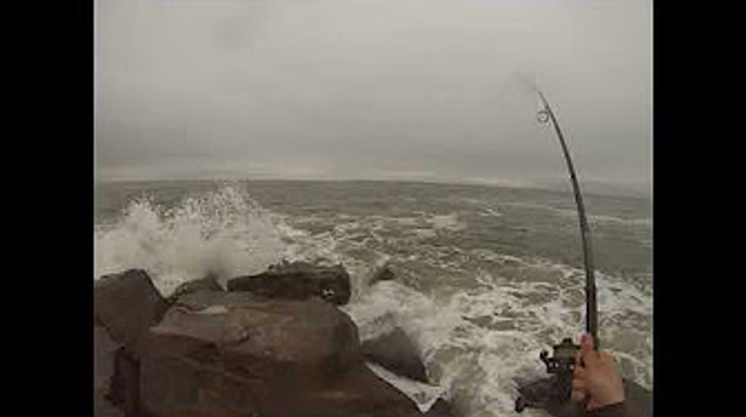 Surfcasting Long Island Jetty for Stripers and Bluefish