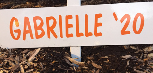 FALL NAME PLATE (WITH NAME STICKER) --ONLY--