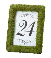 Moss 4x6 Table Frame