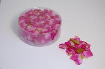Flower Petal Box 554 x Delphinium Lilac
