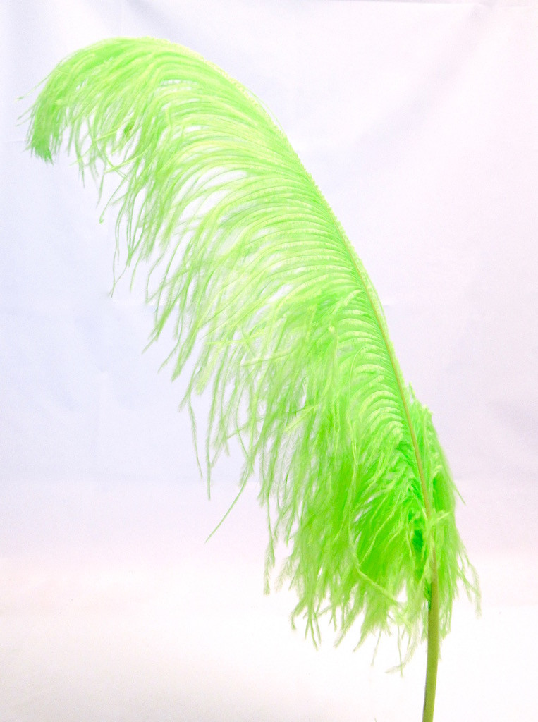 Lime Ostrich Feather Plume