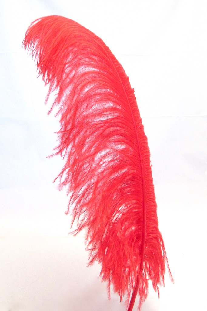 Red Ostrich Feather Plume large