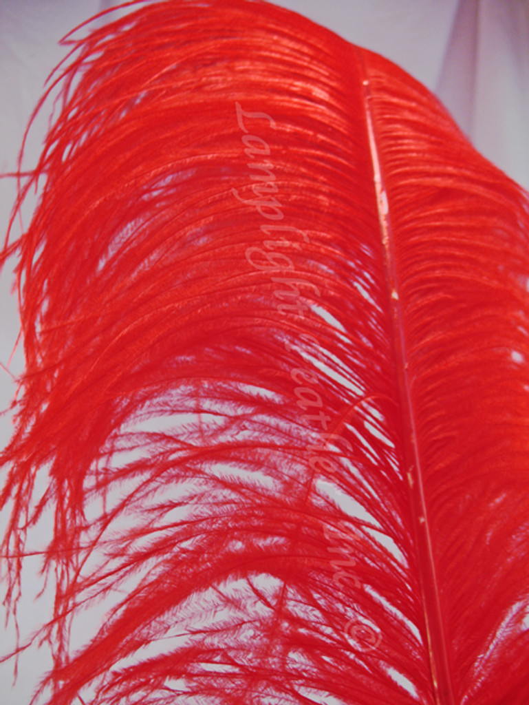 Red large Ostrich Feather Plume