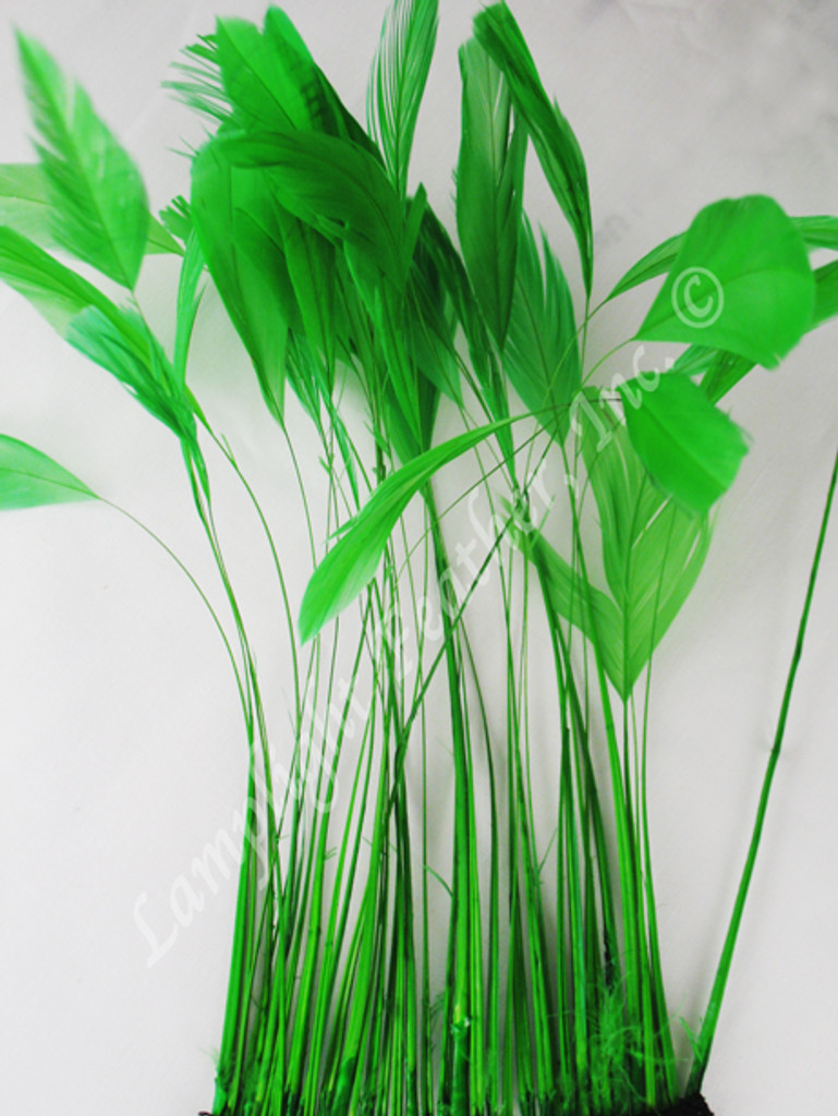 STRIPPED Coque, Green