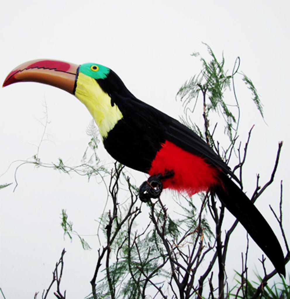 ARTIFICIAL BIRD, TOUCAN, 22 inch, per EACH