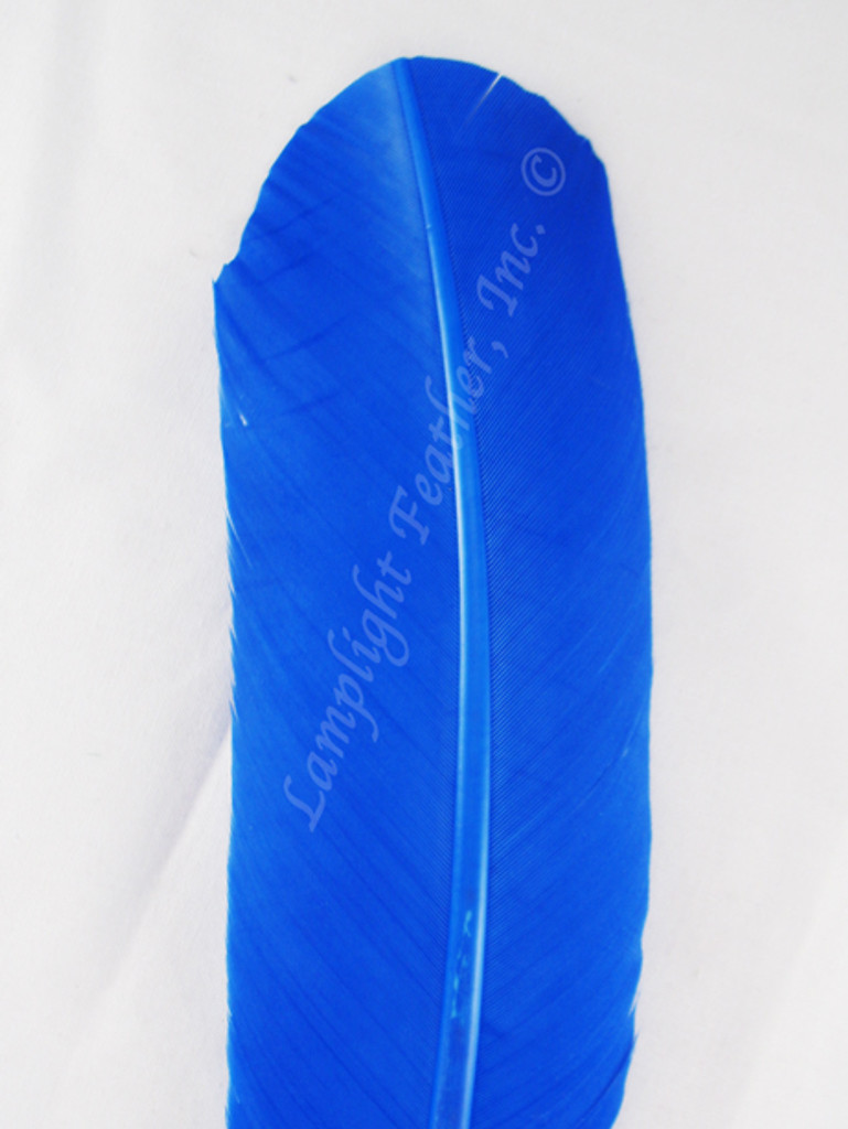 Turkey Feathers, wing rounds, dyed Blue, per DOZEN