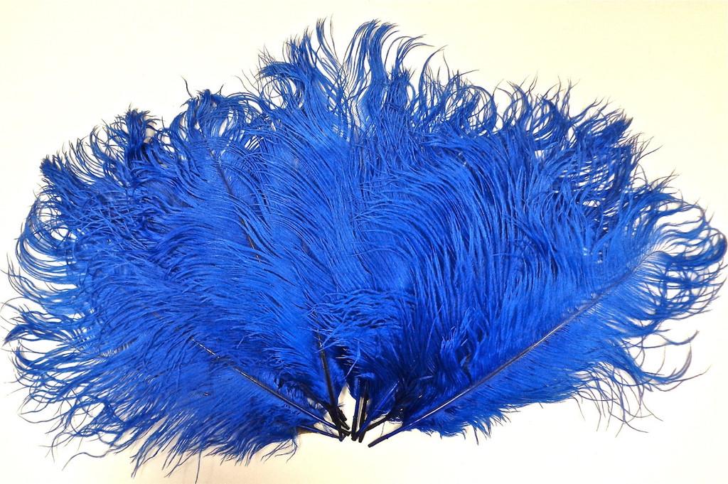 Blue Ostrich Feather 8-12 inch size per Each