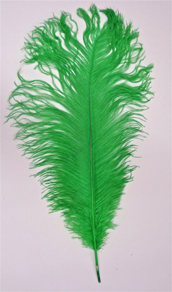 Green Ostrich Feather,  long ostrich feather