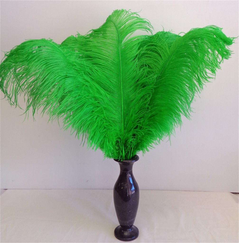 Green OSTRICH FEATHER, LONG per Each