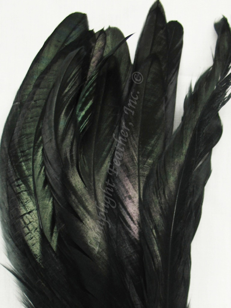 COQUE, 8-10 inch, Black