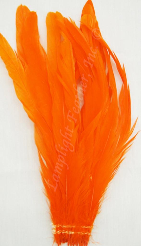 Coque, 7-10 inch, Orange, per hundred