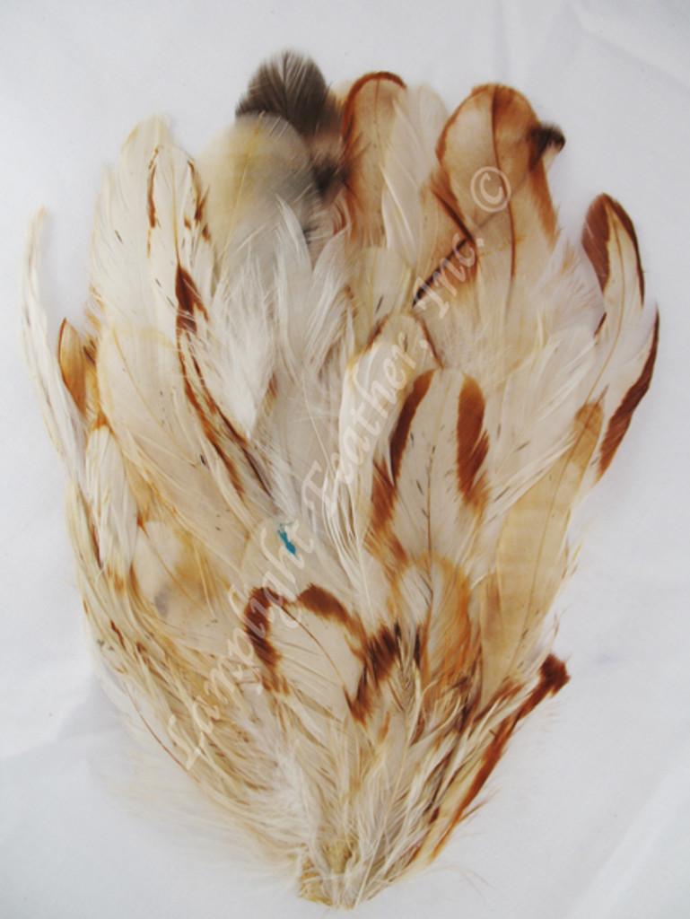 Feather Pad, COQUE cream n' ginger, per each