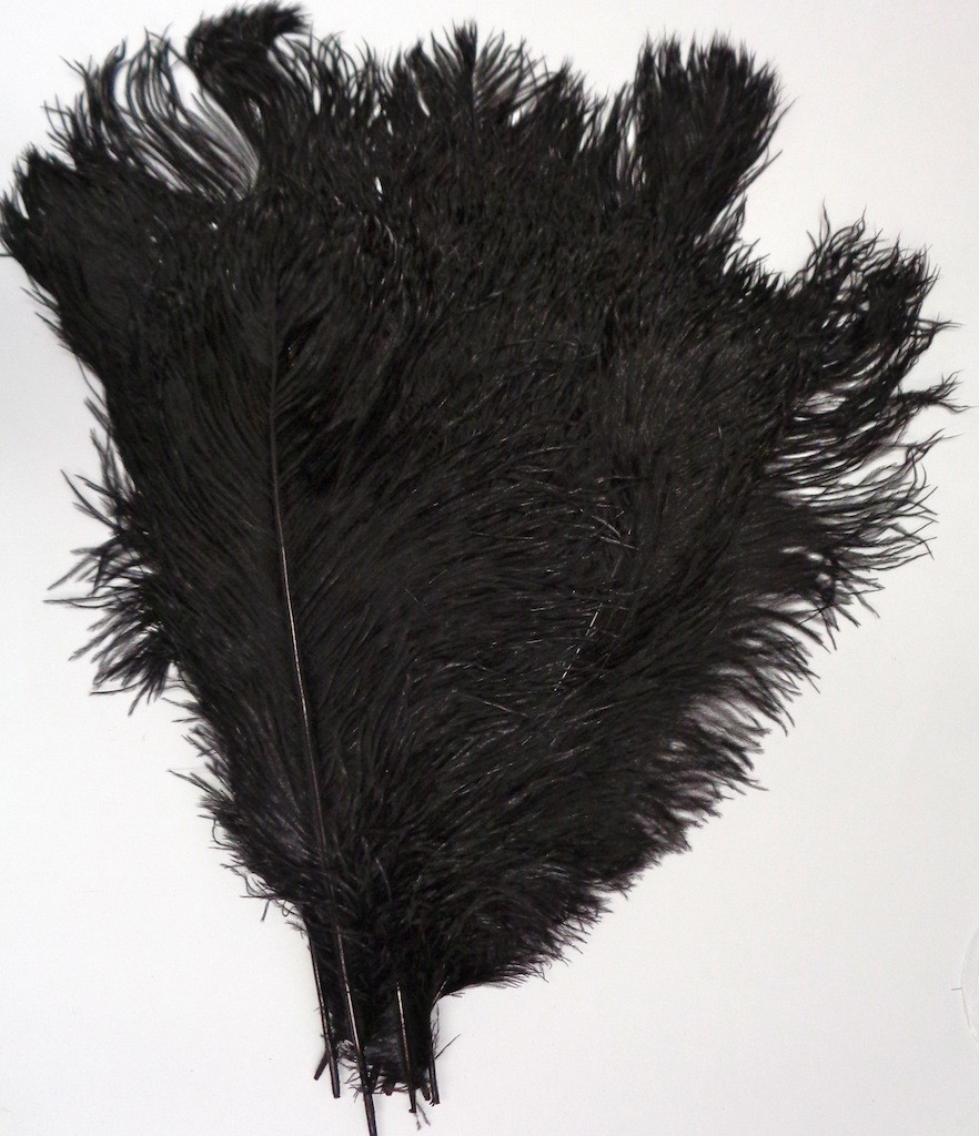 Black Ostrich Feather 16-20 inch Long per Each