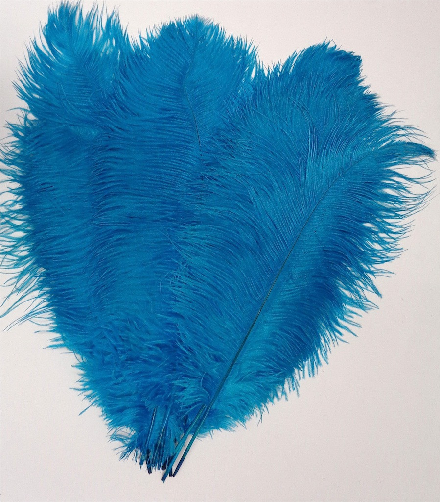 Turquoise OSTRICH Feathers, LONG, per each