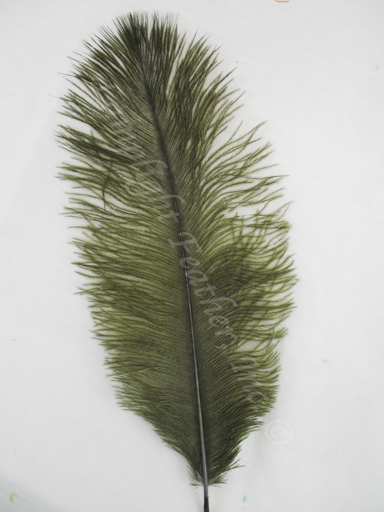 OSTRICH Feathers, MINI, dyed over NATURAL, MOSS,