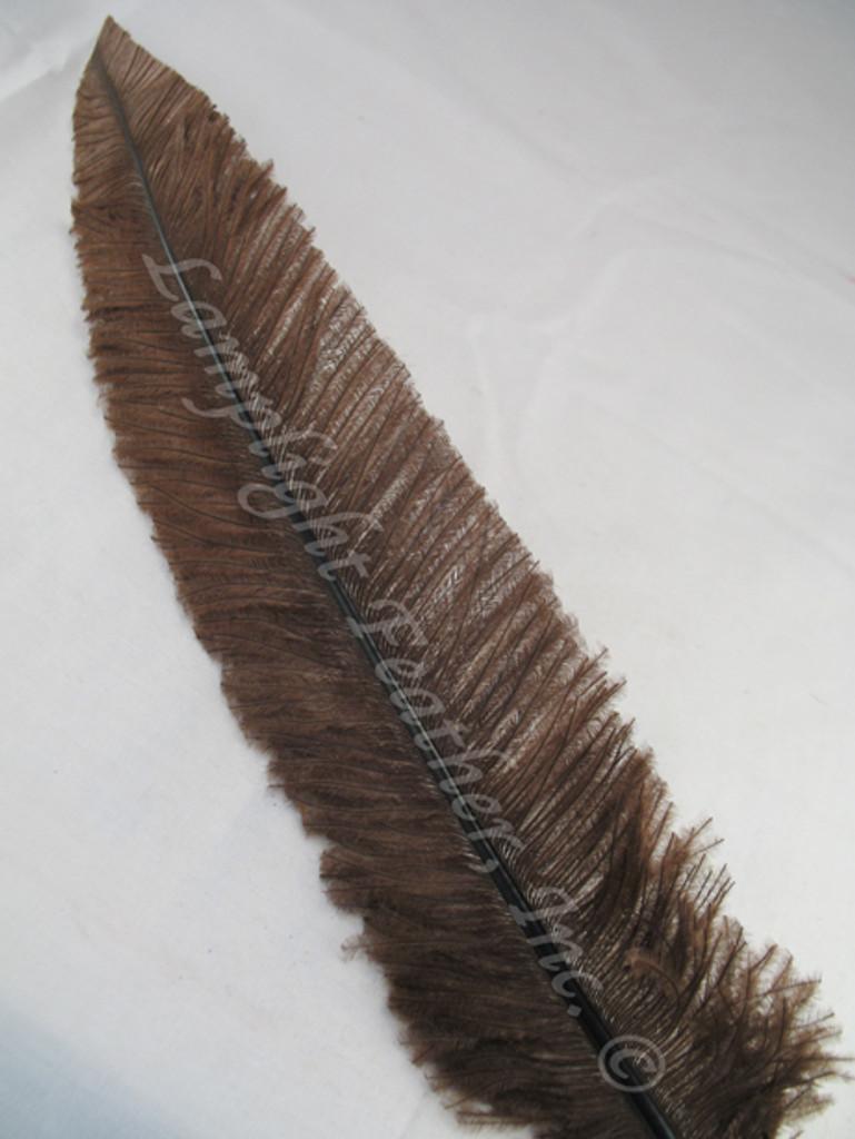 OSTRICH NANDU, SHORT, Brown 8-12 inch per each