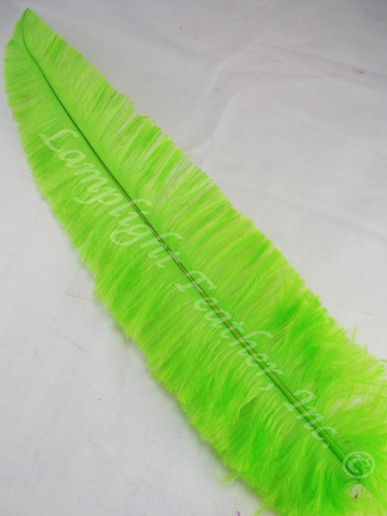 OSTRICH NANDU, SHORT, lime 8-12 inch per Each