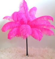 Fuchsia Ostrich Feather Plume Premium Large 24-30 inch per each
