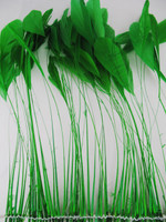 STRIPPED Coque, Green, Pack of 25
