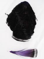 TIPPET CAPE, GOLDEN Pheasant, dyed Purple, per EACH
