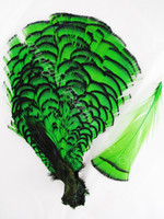 TIPPET CAPE, LADY AMHERST Pheasant, dyed GREEN, per EACH