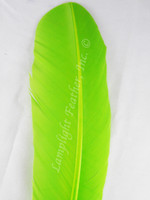Turkey Feathers, wing rounds, dyed lime, per DOZEN