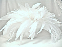 Rooster Feathers Schlappen, LONG, White, 5-7 inch, per FOOT