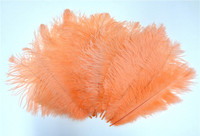 Peach Ostrich Feathers 8-12 inch size per Dozen
